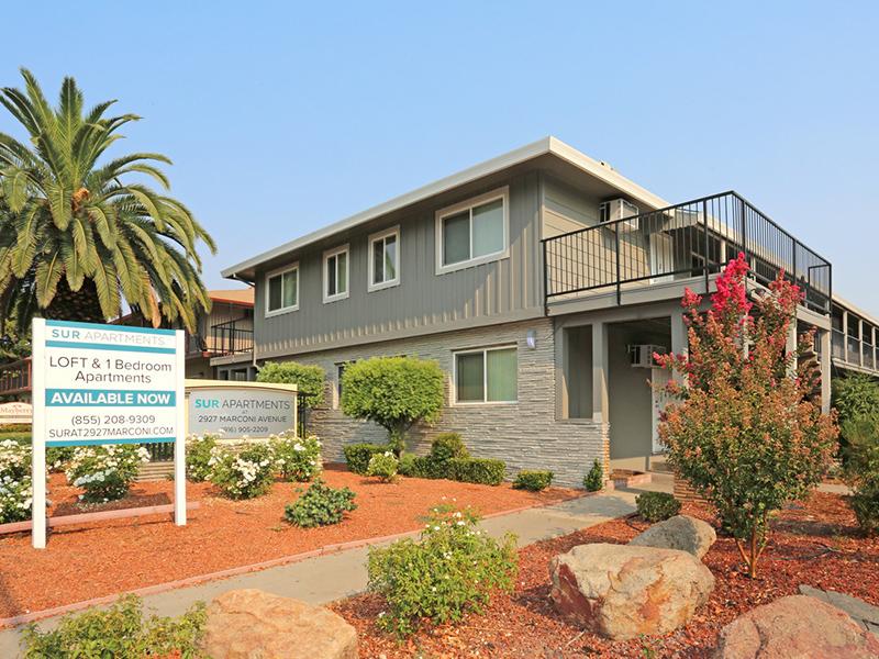 Sur Apartments in Davis, CA