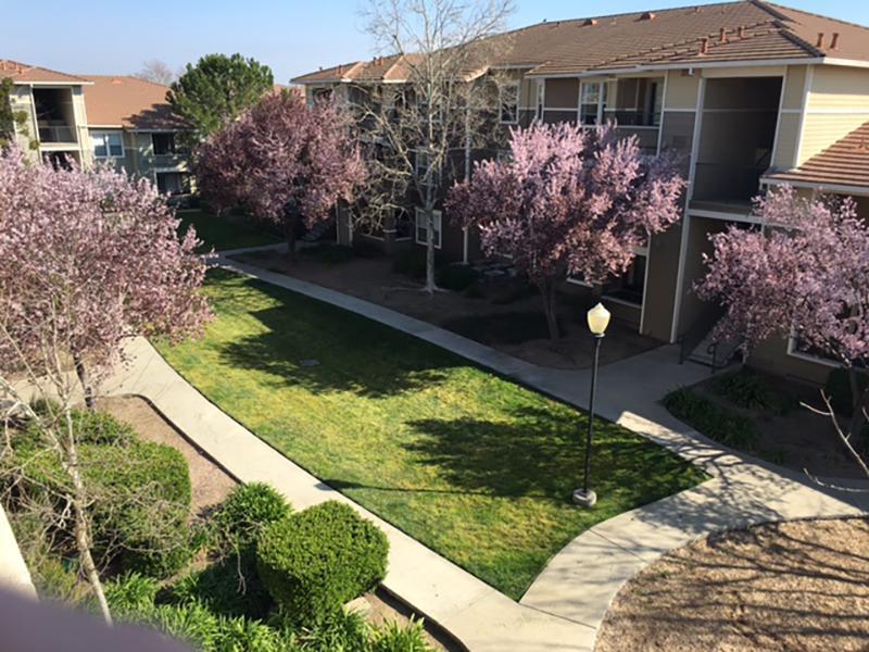 Alhambra at Mace Ranch Apartments in Davis, CA